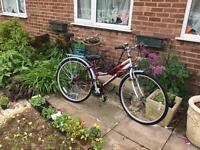 Ladies Probike Enterprise Hybrid Bike