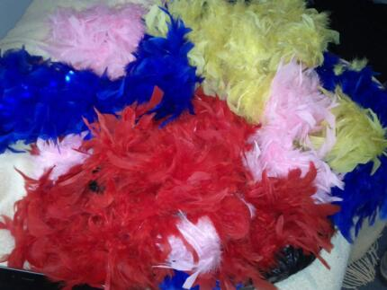 Feather Boas x 4 - red, pink, blue, yellow