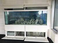 2 x marine fish tanks