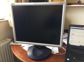 DELL 1900FP Monitor