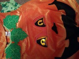 Pumpkin outfit