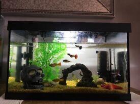Fish tank 25ltr