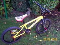 Raleigh BURNER Chaos BMX Bike