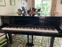 Yamaha baby Grand piano G1 for sale