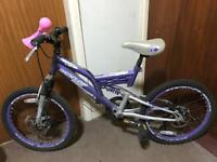 Child's mountain bike Dunlop Vista