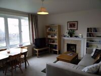 Double room in quiet apartment