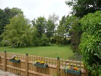 *Late Deal* Holiday cottage -North Yorks- Mon 5th June -6 nights -Sleeps 2-Dog friendly