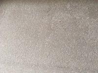 Carpet brand new