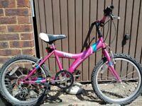 """Apollo Star 20""""inch wheel child's bike"""