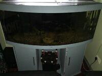 Jewel 450 Litre Fish Aquarium