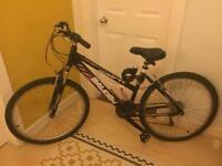 Raleigh Spirit Mountain Bike
