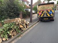 FREE Logs self pickups or deliveries locally