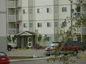 $445 for the first 2 months -  2 bedroom - Insuite Laundry