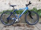 Adult Bike: Claud Butler River Stone