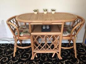 Rattan conservatory set
