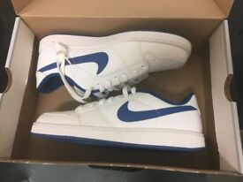Nike Retro Dunks - White with Royal Blue