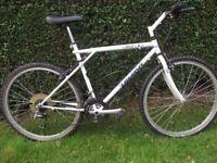 Vintage GT Talera Mountain Bike Classic Retro Cycle