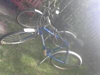 $110 for 2 his & hers bikes!!