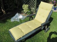 Garden Sun Lounger with new cushion.