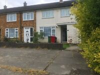 spacious 2 Bedroom Linked Terraced House to rent in Langley