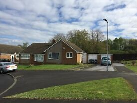 2 bed bungalow to let Kielder Rise, Hemlington