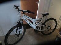 mens muddy fox mountain bike