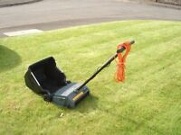 Black and Decker Lawn Raker 240v