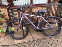 Bicycle Cadence 2 by Edinburgh Bicycle