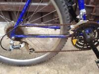 Diamond back retro mountain bike