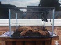 28 litre fishtank