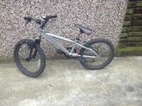Saracen bike