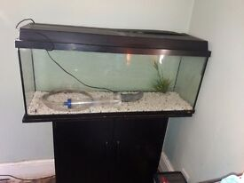 120litre fish tank and stand