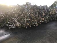 Firewood Lengths- hardwood logs
