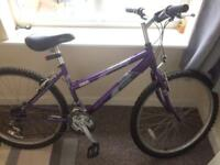 Free purple Raleigh bike to go to a good home!