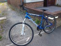 Bike python 260 rock blue MADE IN BIRMINGHAM