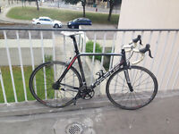 Focus Cayo Expert Compact 2010 Carbon Road Bike 58/XL