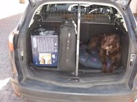 Dog Guard, Luggage Spacer & Boot Floor Protector for Ford Focus Estate 2012 model.