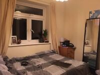 single room in house share
