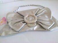 Silver handbag/clutch brand new