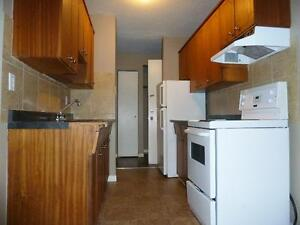 Newly renovated 2BD with balcony and free internet!!! SD 350 Edmonton Edmonton Area image 4