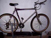 extra large mans classic carrera mountain bike