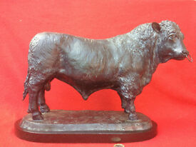 Ltd Edition BRONZE BULL, (Builth Wells) G. Fifield, Welsh Black No40/495