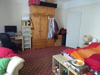 Spacious double bedroom in shared house - close to city centre