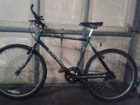 Mens Raleigh Bike