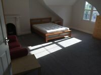 Spacious Uplands Property - Two rooms available