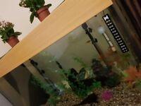 3'4ft 225 litre fish tank QUICK SALE