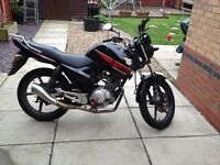 Yamaha YBR 125cc, £1100 ono.