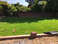 Friendly Professional English -Landscape Gardener/Property Maintence Services •Jetwashing •Decking