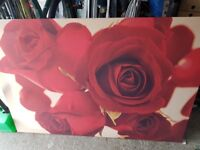 Large red rose canvas