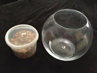 Fish Bowl with Fish Food